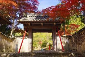 三田市で紅葉を楽しむならココ!おすすめスポット3つを巡ってきた