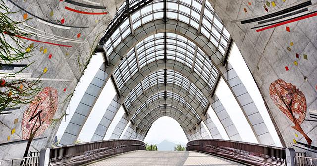センチュリー大橋
