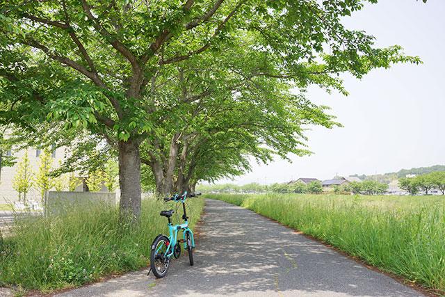 武庫川サイクリングロードと自転車