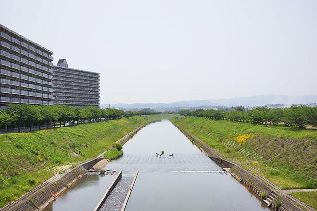 瀬戸橋からの武庫川の眺め