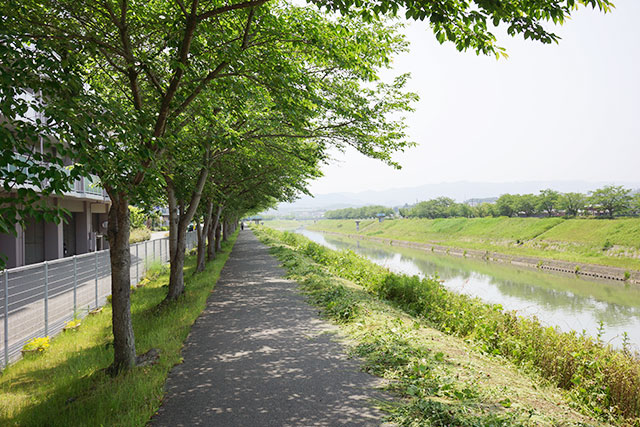 武庫川サイクリングロードの木陰