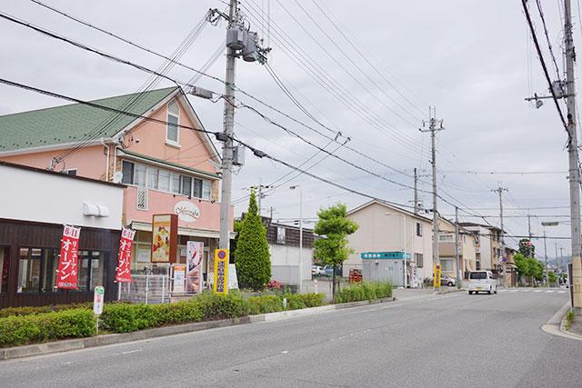とりどーる三田店から北方面の道