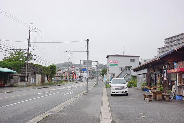 koyo-miwa-close04