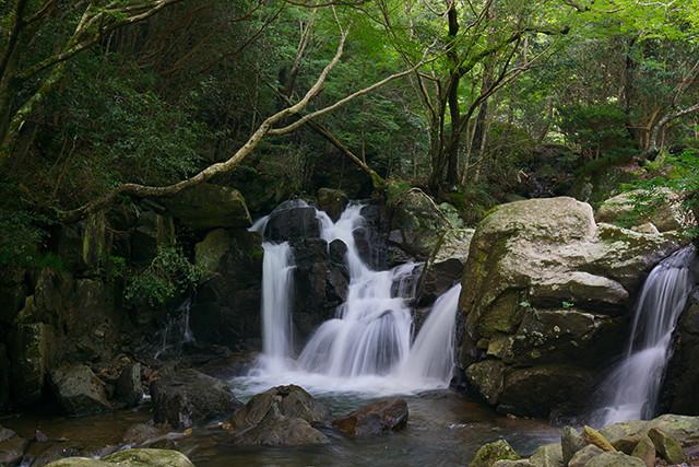 三田の納涼スポット「尼ん滝」で自然の涼しい夏を感じてみる