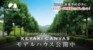 セキスイハウス 三田ウッディタウンけやき台3丁目 KEYAKI CANVAS モデルハウス公開中1